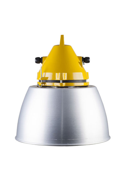Explosion-proof light fittings SIMPLEX